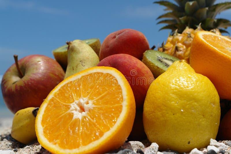 niebieskie niebo bot owoców zdjęcia stock