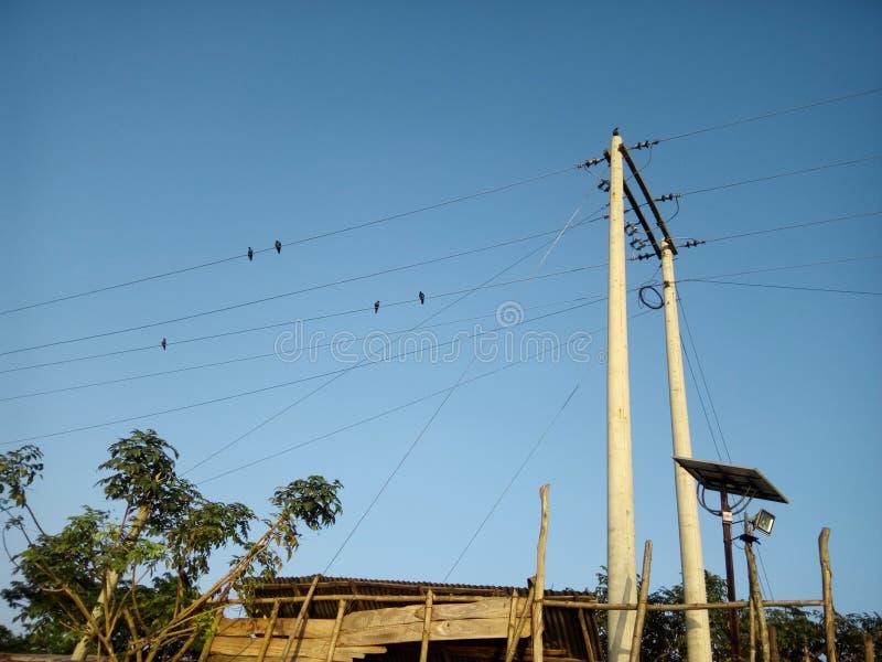 Niebieskie niebo i wrona opisujemy naturę zdjęcia stock