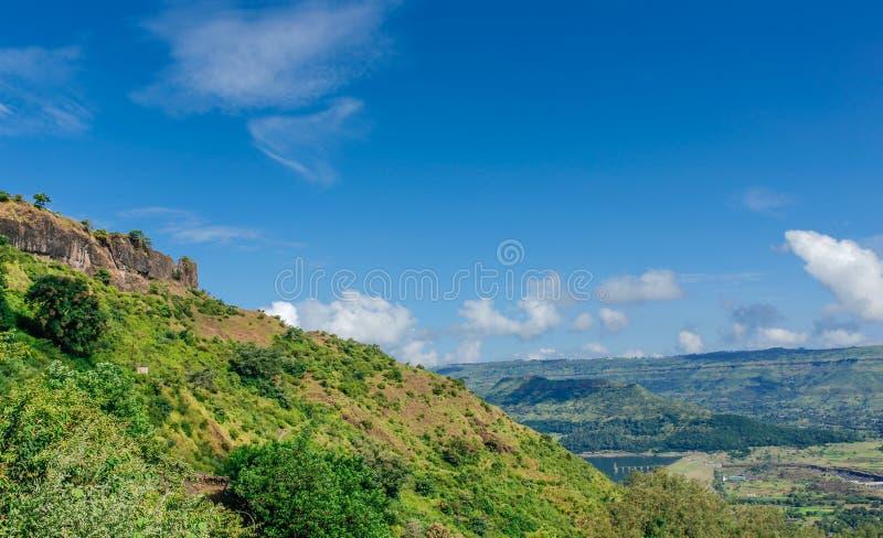 Niebieskie niebo Landcape i trawa zdjęcie royalty free