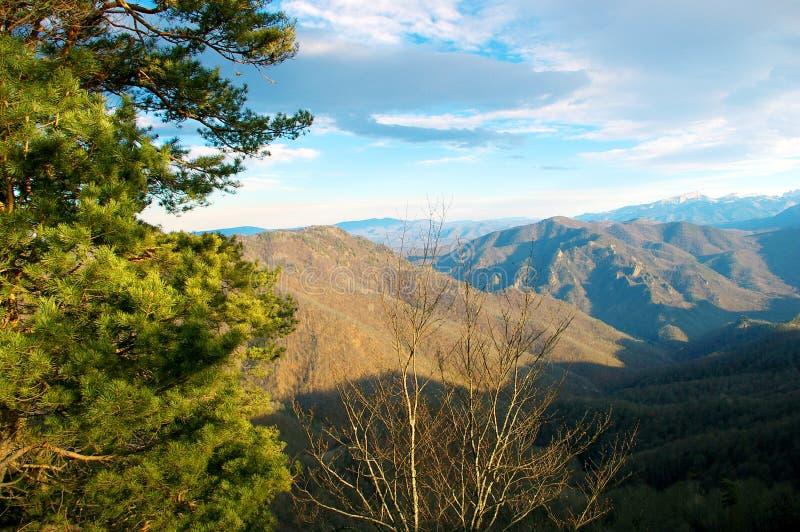 Niebieskie niebo, piękne góry i zielony las, fotografia stock