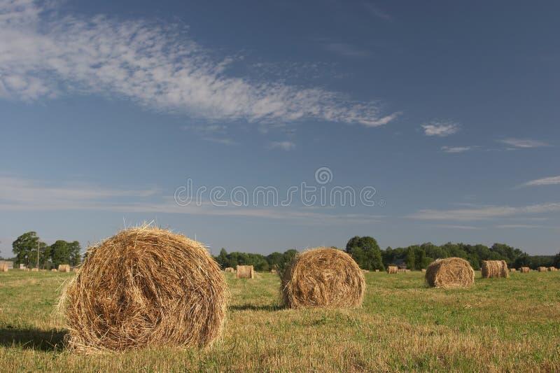 niebieskie niebo siana zdjęcia stock