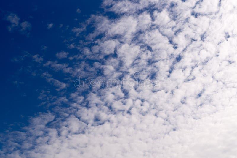 Niebieskie niebo z chmurami, Ñ  irrus cumulus, tło, natura zdjęcie royalty free