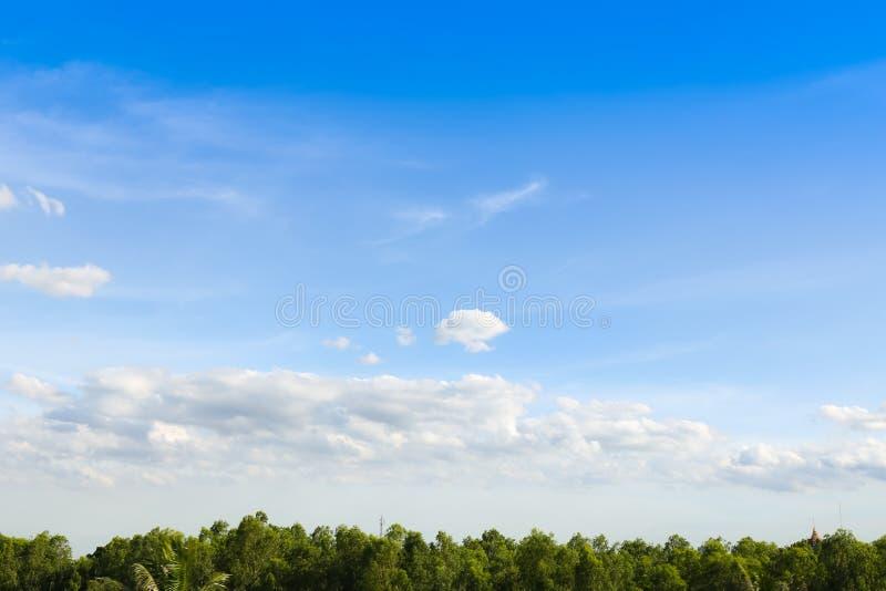 Niebieskie niebo z chmurami nad polem royalty ilustracja