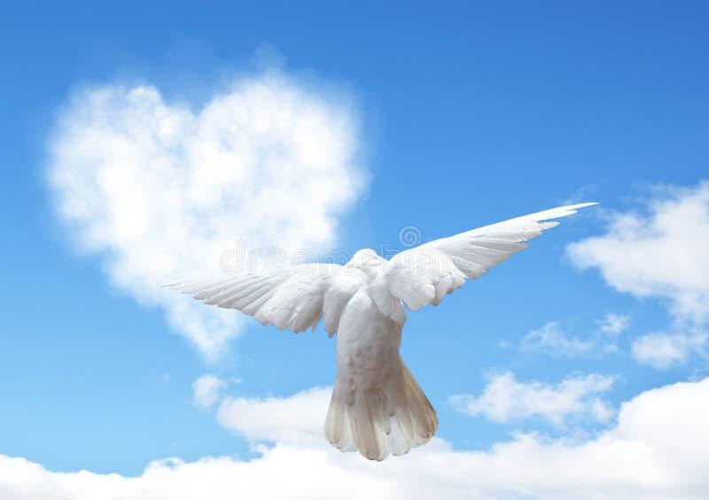 Niebieskie niebo z serce kształta gołąbką i chmurami zdjęcie stock