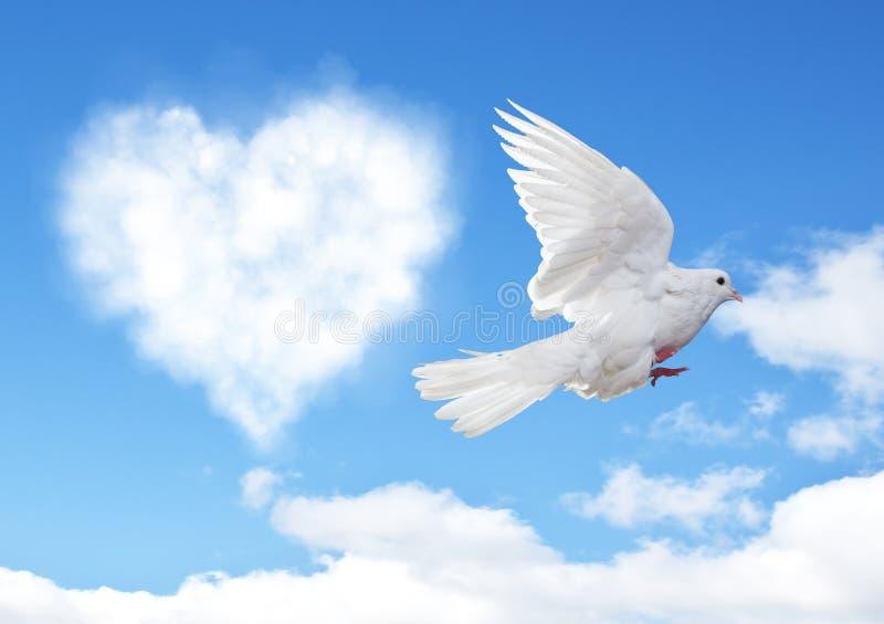Niebieskie niebo z serce kształta gołąbką i chmurami zdjęcia stock