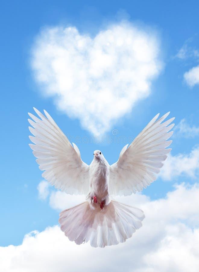 Niebieskie niebo z serce kształta gołąbką i chmurami fotografia stock