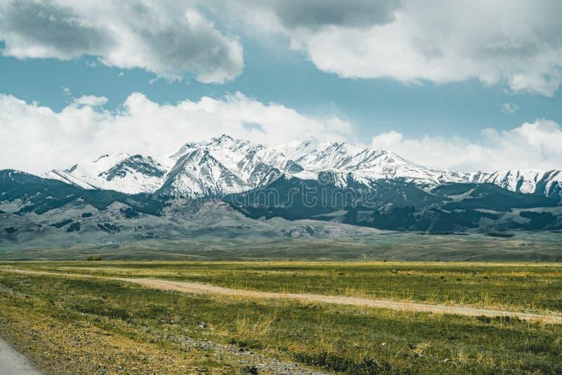 Niebieskie Niebo z Tian shanu górami w tła i zieleni stepie, Kazachstan centrala Azja zdjęcie stock