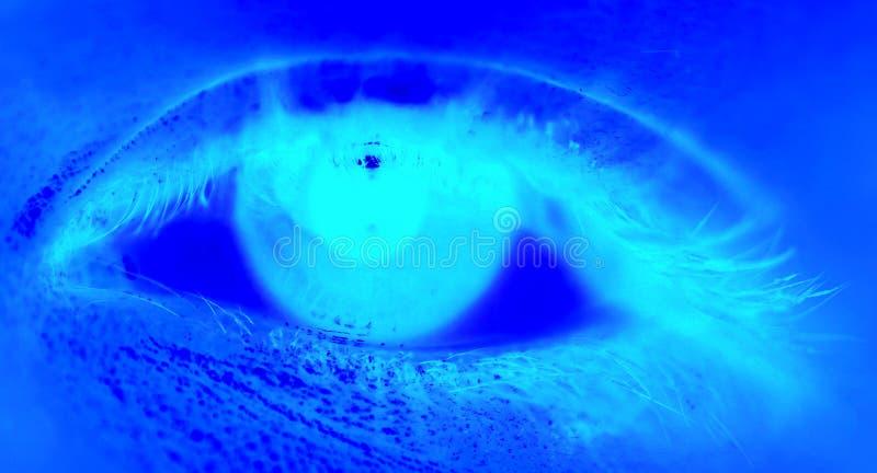 niebieskie oczy royalty ilustracja