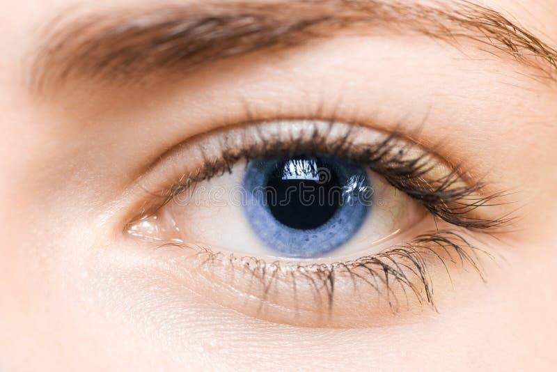 Niebieskie oko zdjęcia stock