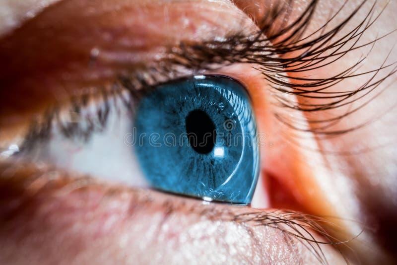 niebieskie oko ludzkie fotografia stock