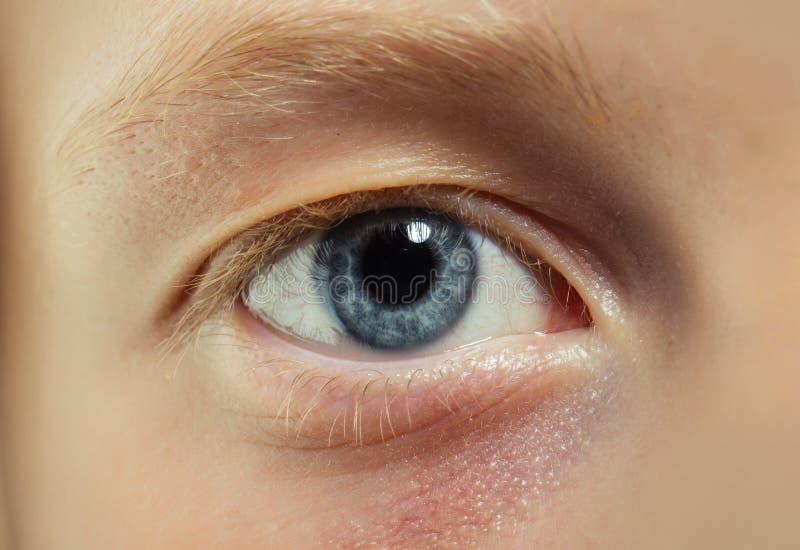 Niebieskie oko z blond rz?sami i brwi? Oko bez makeup Naturalny pi?kna spojrzenie i ?adny uzupe?nia zdjęcie royalty free