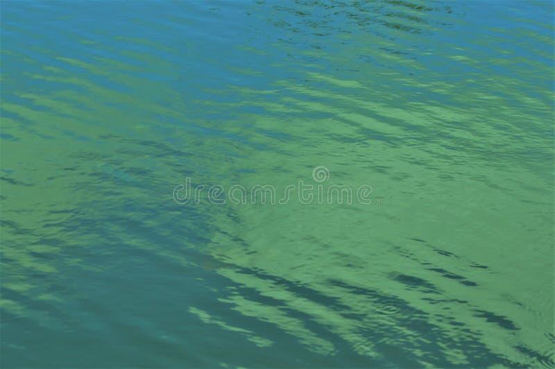 niebieskozielony czochry tło fotografia stock
