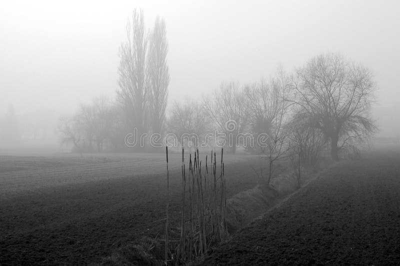 Niebla 02 fotos de archivo
