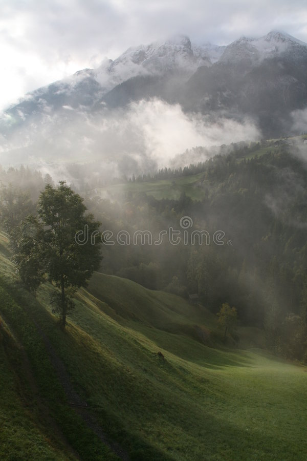 Niebla alpestre de la mañana imagenes de archivo