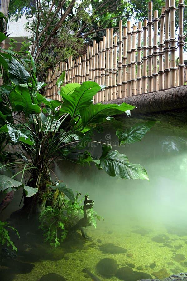 Niebla bajo el puente foto de archivo