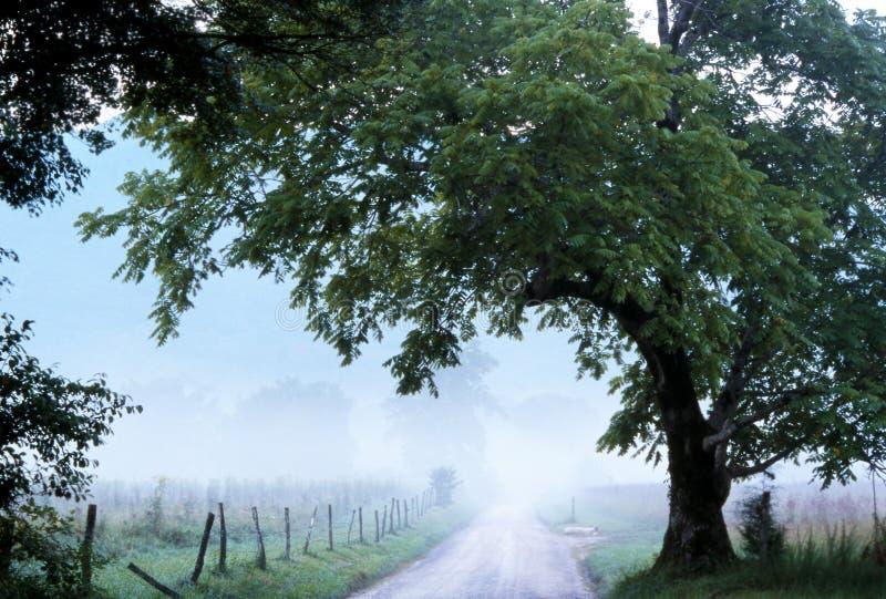 Niebla de la ensenada de Cades sobre carril de las chispas imágenes de archivo libres de regalías