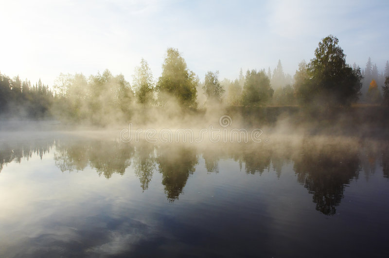 Niebla de la mañana foto de archivo