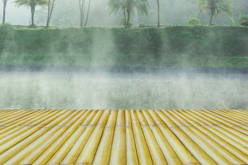 Niebla de la mañana ilustración del vector
