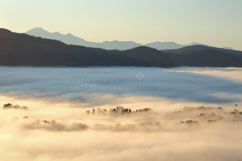 Niebla de la mañana, valle de Fraser, Columbia Británica imagen de archivo