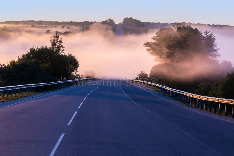 Niebla de la madrugada de Dence en wold en la carretera del verano cerca del río con los carriles de guardia foto de archivo