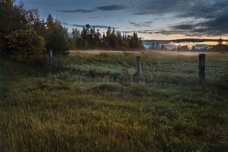 Niebla de la puesta del sol en campo fotos de archivo