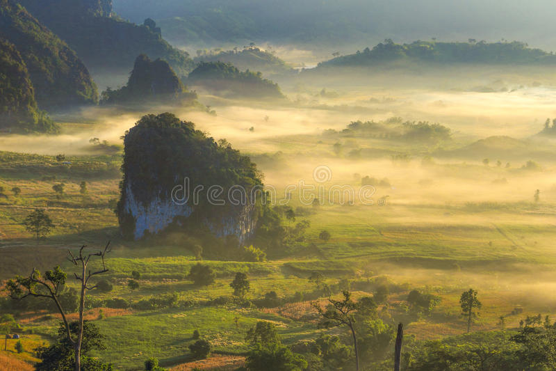 Niebla de la salida del sol imágenes de archivo libres de regalías