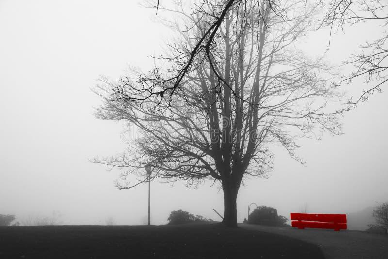 Niebla de levantamiento sobre parque pacífico con el banco vacío solitario rojo Árboles obscurecidos por la niebla Parque brumoso imagenes de archivo
