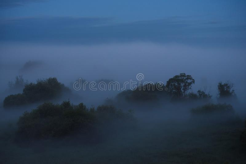 Niebla de medianoche imágenes de archivo libres de regalías