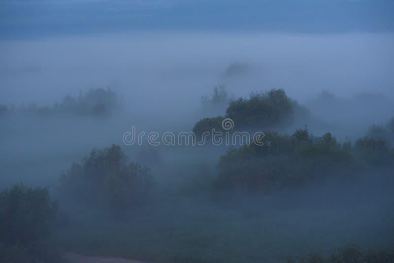 Niebla de medianoche imagen de archivo libre de regalías