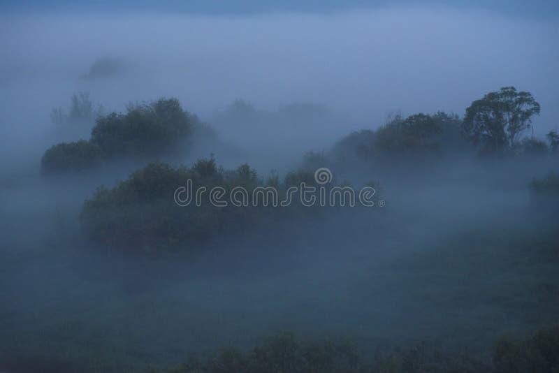 Niebla de medianoche fotos de archivo libres de regalías