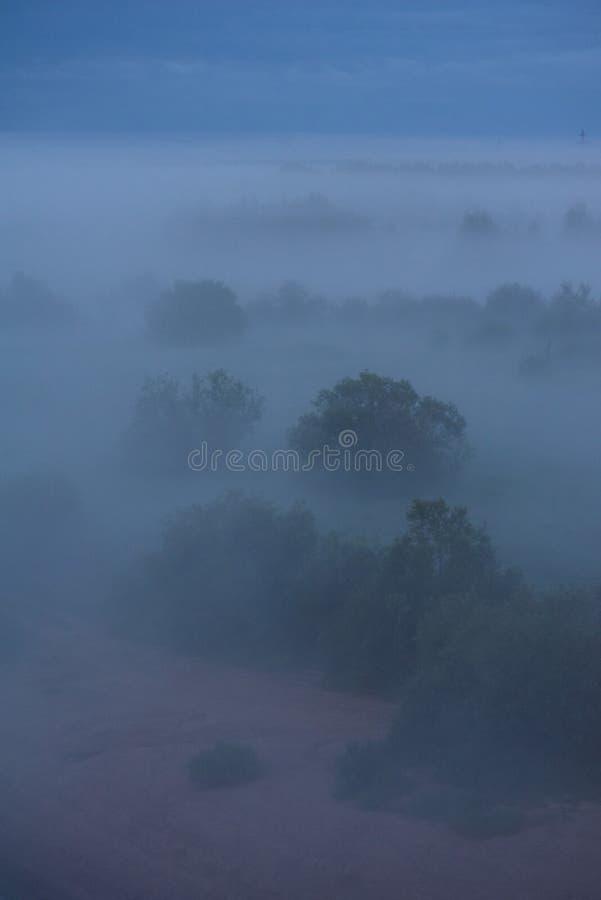 Niebla de medianoche foto de archivo libre de regalías