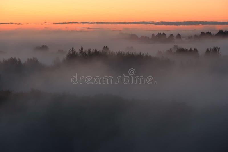 Niebla de medianoche fotografía de archivo libre de regalías