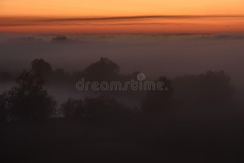Niebla de medianoche foto de archivo