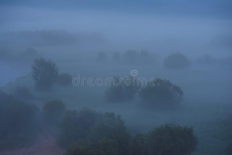 Niebla de medianoche fotografía de archivo