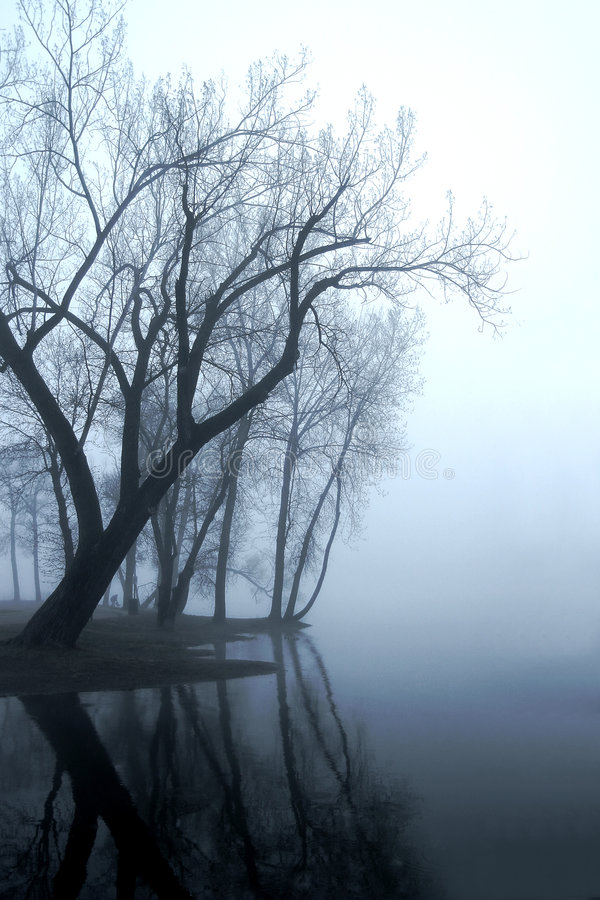 Niebla de Missippi fotos de archivo