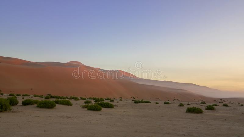 Niebla de oro de la hora en el desierto cuarto vacío fotos de archivo