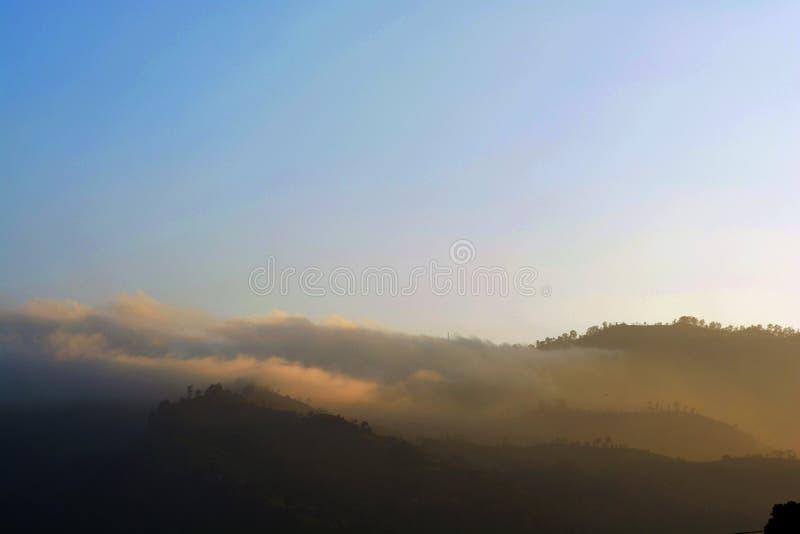 Niebla del retratamiento en la neblina del predawn de la niebla en Sri Lanka fotografía de archivo