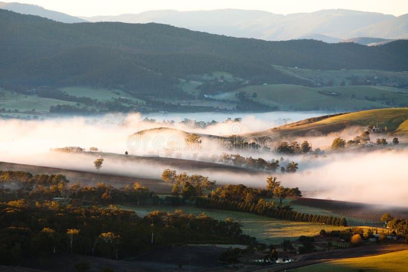 Niebla del valle de Yarra en la salida del sol fotografía de archivo libre de regalías