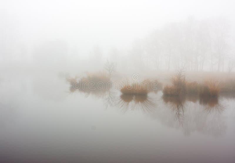Niebla densa sobre un lago fotografía de archivo libre de regalías