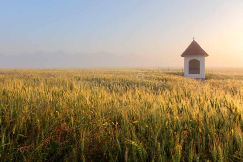 Niebla en campo de trigo con la capilla en Eslovaquia Tatras imágenes de archivo libres de regalías