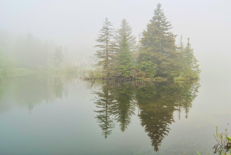 Niebla en el lago Spruce en Vermont imagenes de archivo