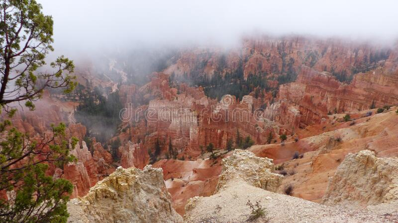 Niebla en el Parque Nacional del Cañón Bryce en Utah imagen de archivo