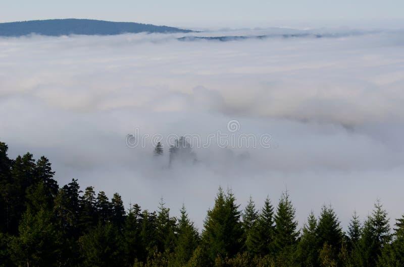 Niebla en el valle foto de archivo libre de regalías