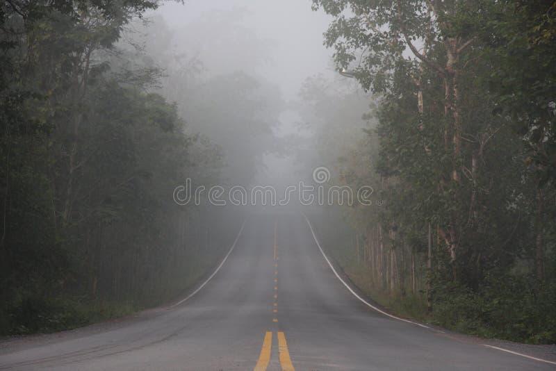 Niebla en la manera fotografía de archivo libre de regalías