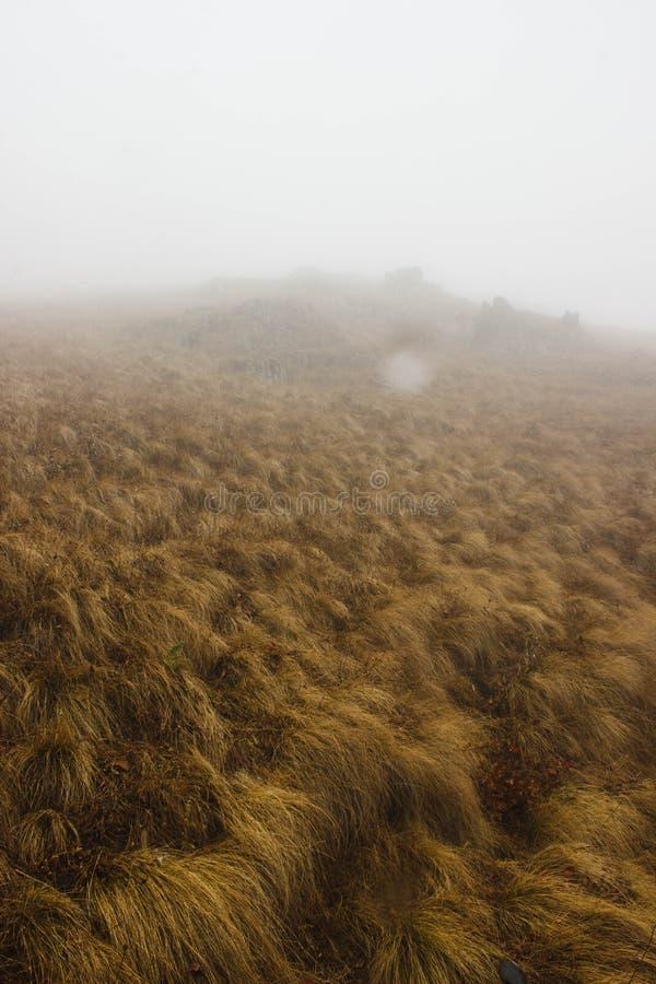 Niebla en las montañas imágenes de archivo libres de regalías