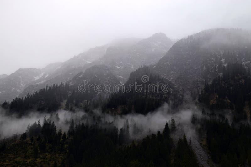 Niebla en las montañas el mañana, en Alp Mountains alemán fotos de archivo