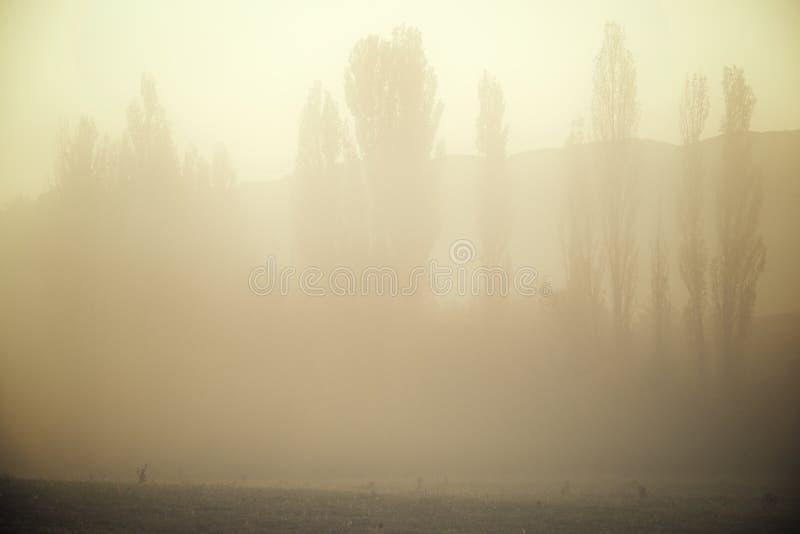 Niebla en los Pirineos foto de archivo libre de regalías