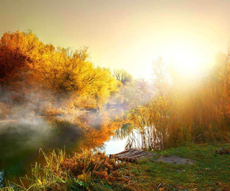 Niebla en otoño foto de archivo