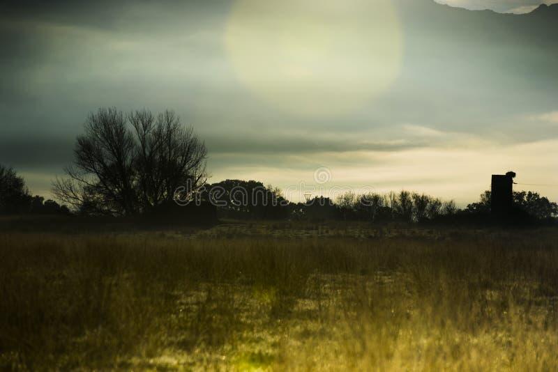 Niebla en un llano en el amanecer imagen de archivo libre de regalías