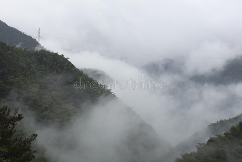 Niebla gruesa en el valle foto de archivo libre de regalías